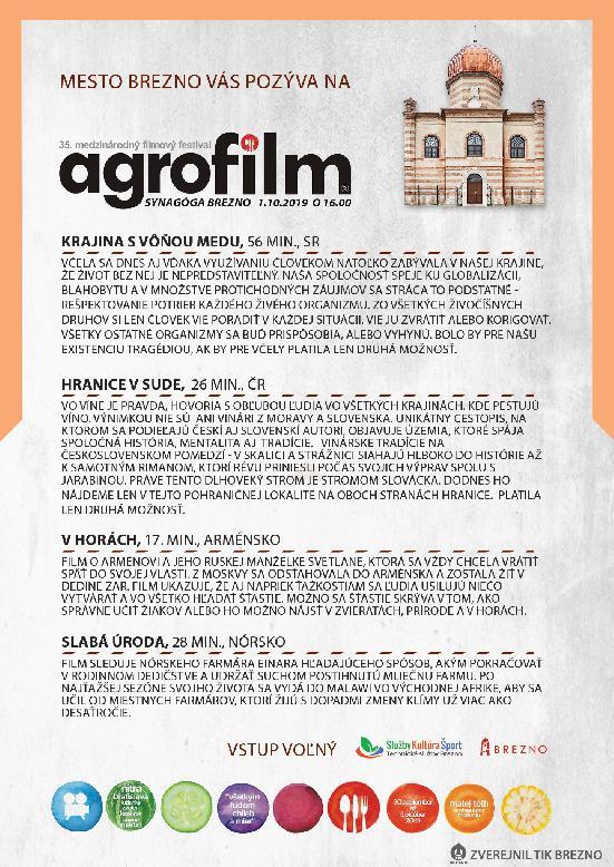 synagoga_agrofilm2019.jpg