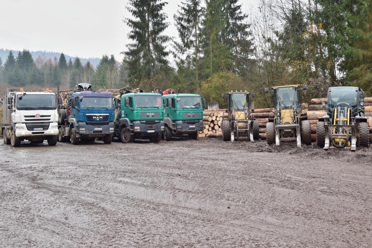 Zriadenie expedičného skladu má pomôcť transparentnému predaju dreva