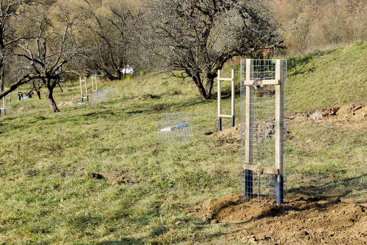 Arborétum Banisko získalo cenu Top projekt roka