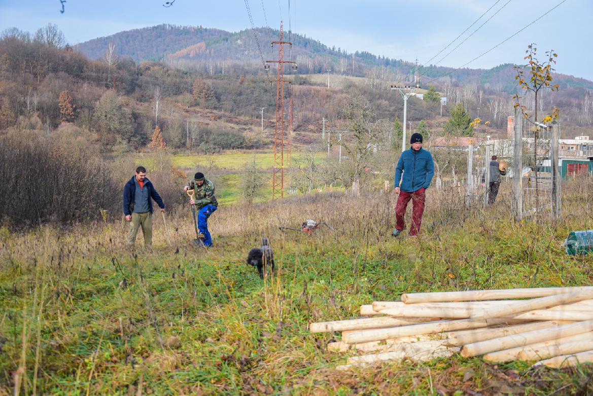 obr: V sade zasadili ďalšie stromy