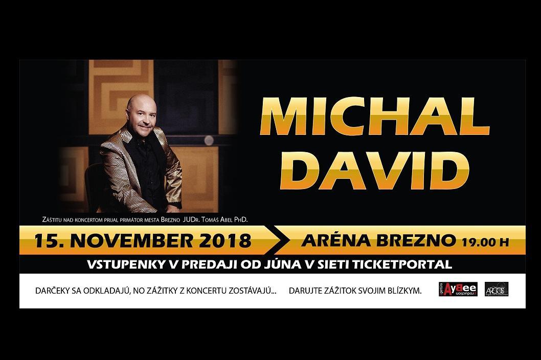 Organizačné pokyny Michal David Brezno 2018