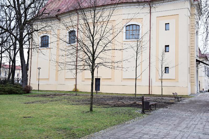 Dve odstránené lipy v mestskom parku už nahradili výsadbou troch nových líp